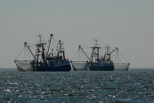 océan bateaux